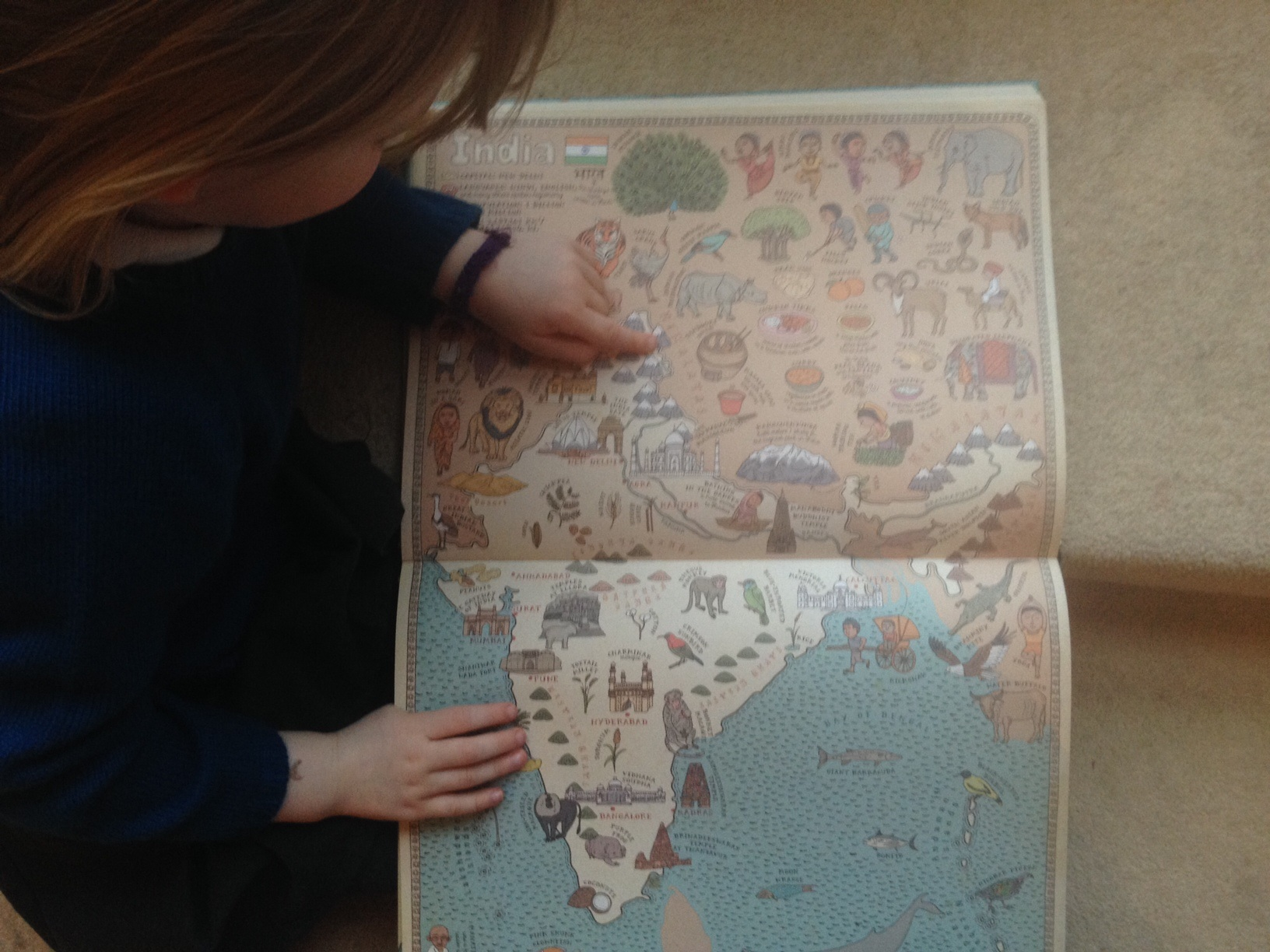 We Like to Read Maps by Aleksandra and Daniel Mizielinski
